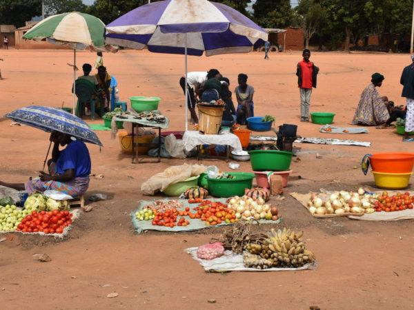 Cronaca di una giornata a Huambo